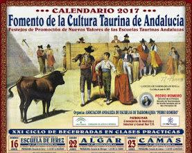 Asociación Andaluza de Escuelas de Tauromaquia