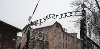 Auschwitz, Katyn