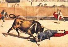 toros célebres