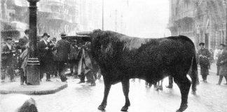 Fortuna mató a un toro en la Gran Vía de Madrid