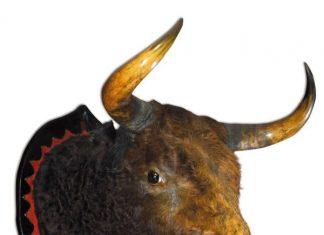 Llavero, el toro de los 53 puyazos