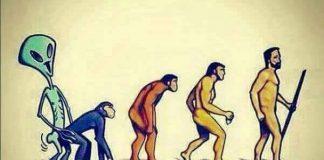 evolucionistas