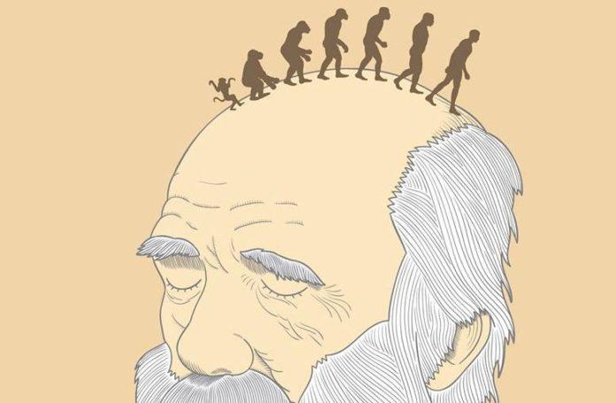 jaque mate al evolucionismo
