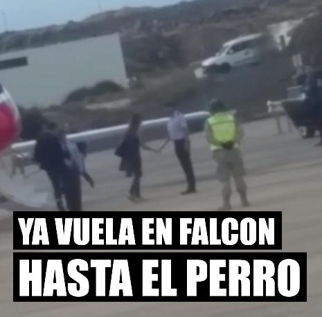 Pedro Sánchez Falcon Lanzarote