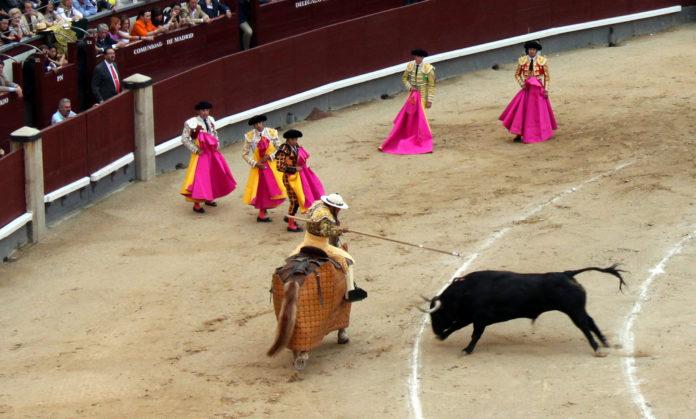 así se pica a un toro