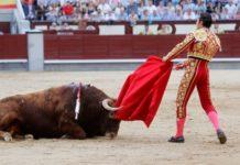 caída de los toros