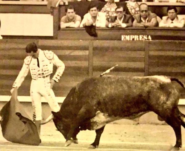 toreros castellanos