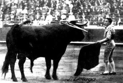 toro más grande