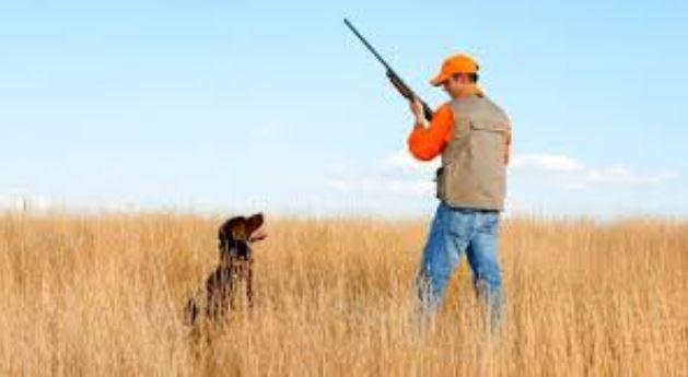Otro gesto de un cazador por sus perros que le cuesta la vida