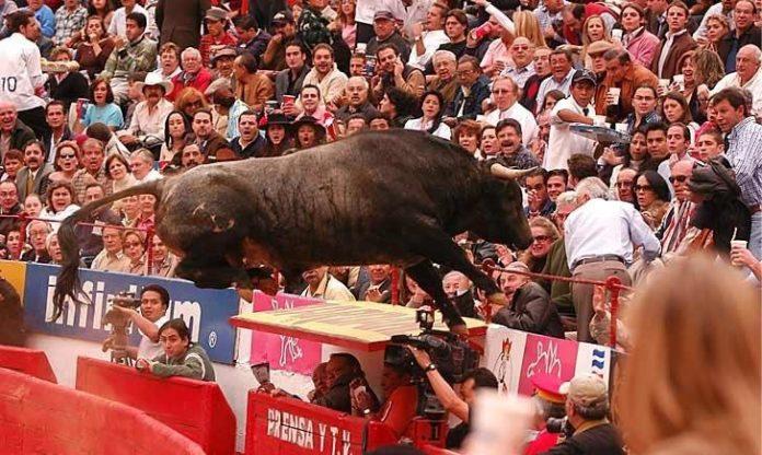 primer toro que saltó al tendido