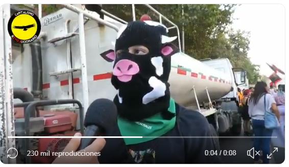 Activista Feminazi vacas