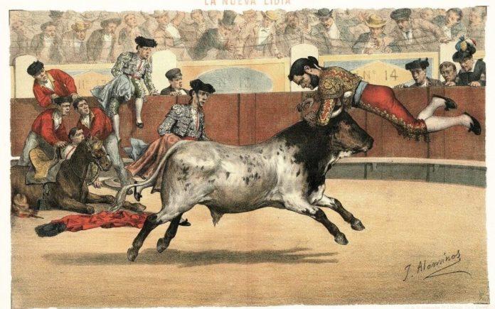 raza torera