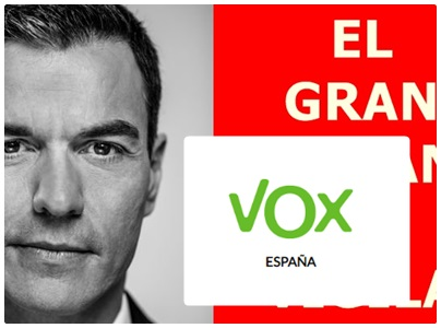 Defensa PSOE web de Vox