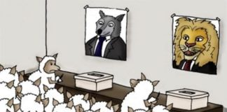 elecciones de 2019