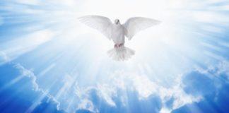 divina claridad