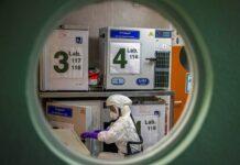 virus de laboratorio